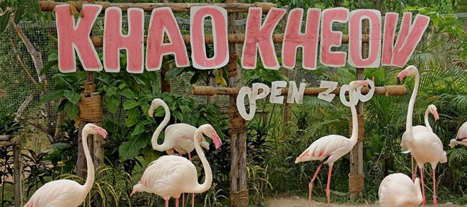 Khao Kheow Zoo rental car Q&A,Khao Kheow Zoo Golf car rental,Khao Khiao Zoo rental car,Khao Khieo Zoo rental car,Khao Kheow Zoo Golf car price,Golf cart service in Khao Kheow Zoo,Khao Kheow Zoo open time,Khao Kheow Zoo transport Q&A,Khao Kheow Zoo traffic tips,travel in Thailand,zoo in Pattaya