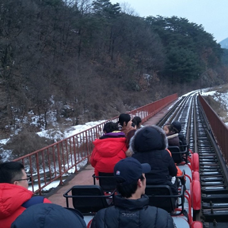 Private Group Tour Namiseom Island & Gangchon Rail Bike