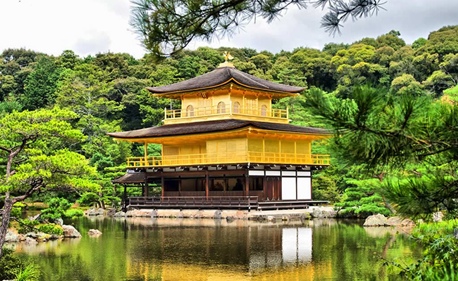 Day Tour Kyoto FAQS on Kinkakuji & Ginkakuji and Kiyomizudera Temple,day tour to Kyoto temples FQAS,day tour to Kyoto temples Q&A,Kinkakuji FAQS,Ginkakuji FAQS,Kiyomizudera FAQS,Kyoto tempels FAQS info,Kinkakuji Temple Q&A,Ginkakuji Temple Q&A,Kiyomizu dera Q&A,Kyoto temple tour info,Kyoto temple stay info,Kyoto must-visit temples Q&A,Kyoto most recommended temples info,