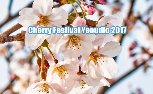 Expected Cherry Festival Korea 2017,Best Cherry Tour Korea 2017